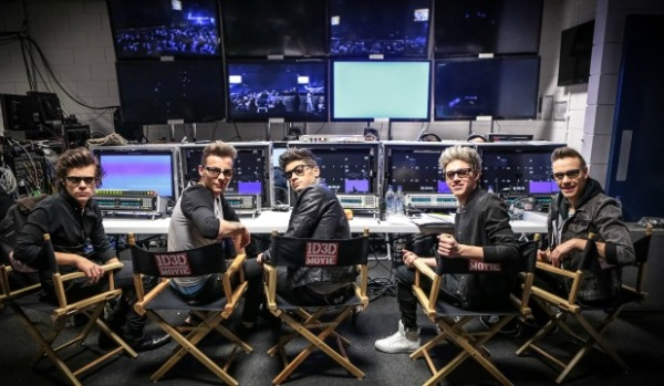 1d3d-one-direction-directors-chair
